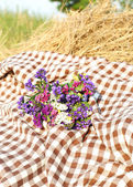 Plaid and flowers on hay stack in field — Stock Photo