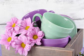 Bright dishes with flowers in crate on wooden background — Stok fotoğraf