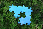 Puzzle pieces on green grass — Stock Photo