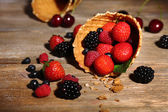 Different ripe berries in sugar cone — 图库照片