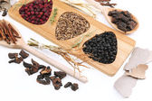 Traditional chinese herbal medicine ingredients — Zdjęcie stockowe