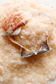 Sea salt and seashell — Stock Photo