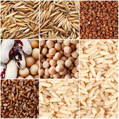 Groats and grains background — Stock Photo