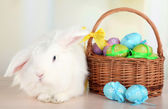 White cute rabbit and Easter eggs — Stock Photo