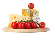 Different kinds of cheese — Stockfoto