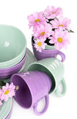 Bright dishes with flowers — Stock Photo