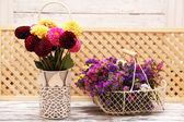 Dahlia flowers in vase — Stock Photo