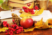 Books and autumn leaves — Stock Photo