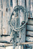 Old rope on wooden background — Stock Photo