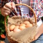 huevos en la cesta de mimbre — Foto de Stock   #50272361