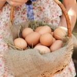 huevos en la cesta de mimbre — Foto de Stock   #50272375