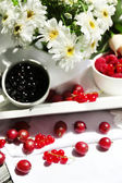 Tasty berries and fresh flowers — Stockfoto