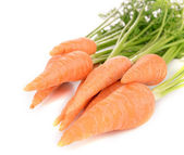 Fresh carrot with leaves — Stock Photo