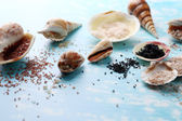 Different sea salt and shells — Stock Photo