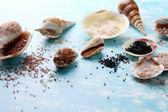 Different sea salt and shells — Stok fotoğraf