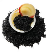 Sea salt and seashell — Stock Photo