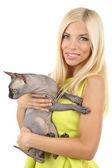 Krásná mladá žena hospodářství sphinx šedá kočka izolované na bílém — Stock fotografie