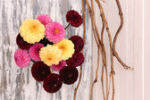 Dahlia flowers in vase — Stock Photo