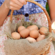 Eggs in wicker basket — Zdjęcie stockowe #50545625