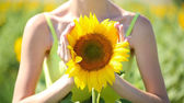Beautiful sunflower in female hands — Stok fotoğraf