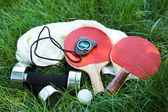 Sport equipment on green grass — Stock Photo