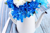 White and blue chrysanthemum — Stock Photo