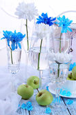 White and blue chrysanthemum — Foto Stock