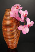 Bamboo vase with orchid on grey background — Stockfoto