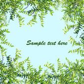 Frame of green leaves — Stock Photo