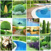 Collage of beautiful nature landscaping — Stock Photo