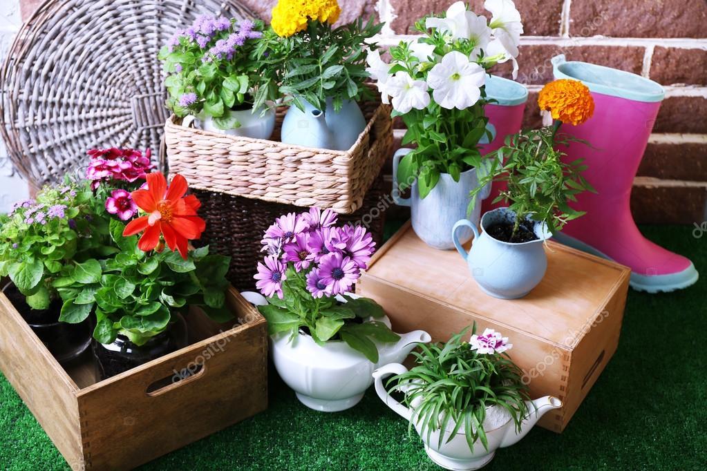 Pin carpeta jardin de infantes gomaeva cartulina y mas for Figuras decorativas para jardin