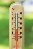Thermometer on natural background — Stock Photo