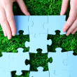 Hand holding puzzle piece on green grass background — Stock Photo #51173107