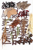 Traditional chinese herbal medicine ingredients on not real hieroglyphs, close-up — Stock Photo