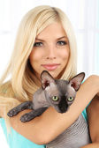 Beautiful young woman holding gray sphinx cat on light background — Stock Photo