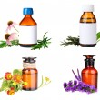 Collage of medicine bottle and herbs, isolated on white — Stock Photo #51220227