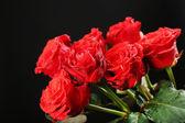 Boeket van mooie rozen — Stockfoto