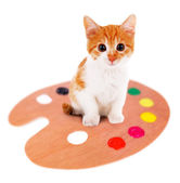 Little kitten with art palette isolated on white — Stock Photo