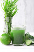 Glass of fresh lime juice, lime, slices of cucumbers and vase of grass on the table in front of wooden wall — Stock Photo