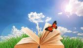 Viejo libro con mariposas al aire libre — Foto de Stock
