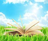 Viejo libro al aire libre — Foto de Stock