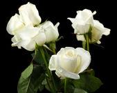 美丽的玫瑰,在黑色背景上的花束 — 图库照片