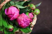 Belle peonie in cesto di vimini su fondo in legno — Foto Stock