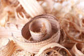 Wood shavings on sawdust closeup — Stock Photo