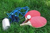 Assortment of sport equipment on green grass background — Stock Photo