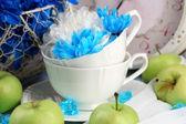 Samenstelling van wit en blauw chrysant close-up — Stockfoto