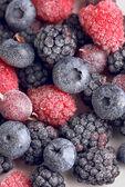 Frozen berries close-up — Photo