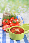 Tasty tomato soup with croutons on table on natural background — Stock Photo