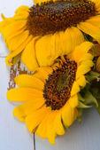 Beautiful sunflowers on wooden background — Stock Photo