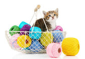 Cute little kitten in basket with thread isolated on white — Stock Photo